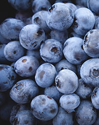 photo of blueberries by Jeremy Ricketts, Unsplash