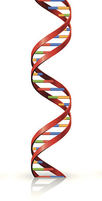 graphic illustration of DNA double helix