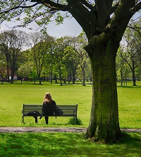 Photo of woman on a bench in park, for autism transition story